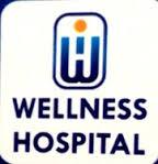 wellnesshospital